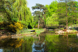 view of botanical garden of Wroclaw at summer day, Poland