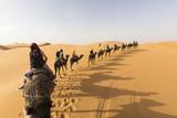 desert - 151574041