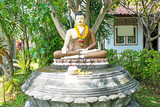 Buddha statue under the Bodhi tree in Bali Indonesia