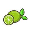 cartoon lime vector - 151808898