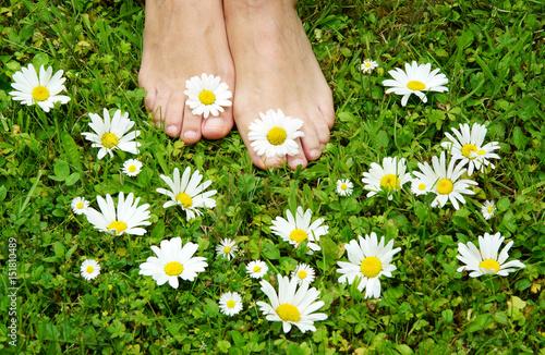 Keuken foto achterwand Pedicure healthy feets, gesunde Füße auf Blumenwiese, barfuß, Margariten, Gänseblümchen, Textraum, copy space