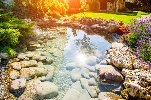 beautiful landscaping with beautiful plants - 151829494