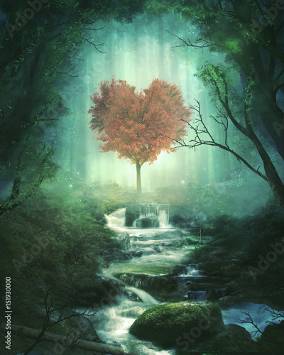 Heart tree in the forest - 151930000