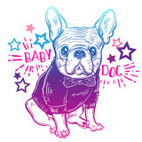Cute vector illustration with French bulldog. A domestic dog in clothes and a butterfly. Fashionable bulldog. - 151981073