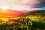 Mountain valley during sunset - 151995228