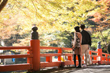秋の京都デート