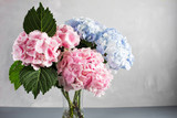 hydrangeas in a glass vase. Hydrangeas produce larger mopheads made up of clusters of small flowers from Summer through Autumn.
