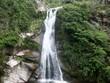 Cordoba, Argentina. Paisaje. Rios. Rocas. Arboles. Naturaleza. Belleza. Flores - 152071633