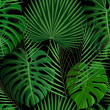 Cotton fabric Tropical seamless pattern with exotic palm leaves.