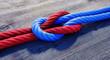 Leinwanddruck Bild - Kreuzknoten mit rotem und blauem Seil auf Holz