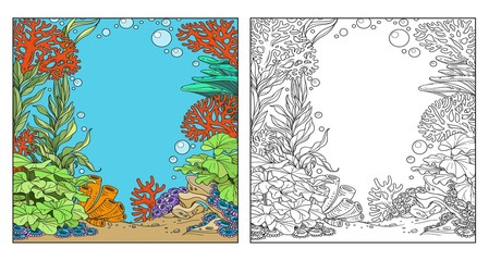Underwater world with corals, seaweed and anemones coloring page on white background