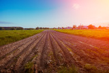 Arable field with clear sky and the sun