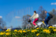 Blur unrecognizable youth, ride bikes. Spring season, green grass meadow, yellow young dandelions, copy space. Abstract background of people activities in park, bokeh