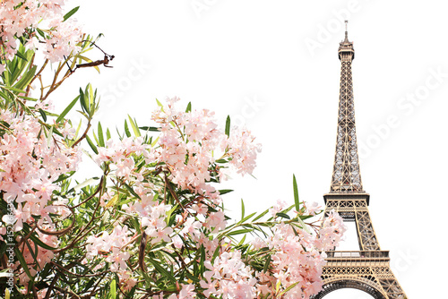 Poster Eiffel tower and pink flowers