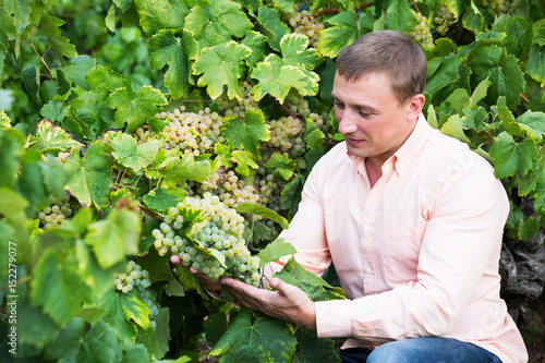 Vintner with clusters of grape