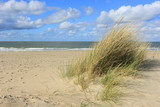 Strand bei Renesse