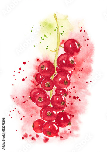 Foto op Canvas Bloemen vrouw Watercolor red currant