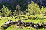 Val di Mello - Valmasino (IT) - Paesaggio alpino primaverile