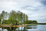 Beautiful spring landscape with a lake and birch trees in gloomy day