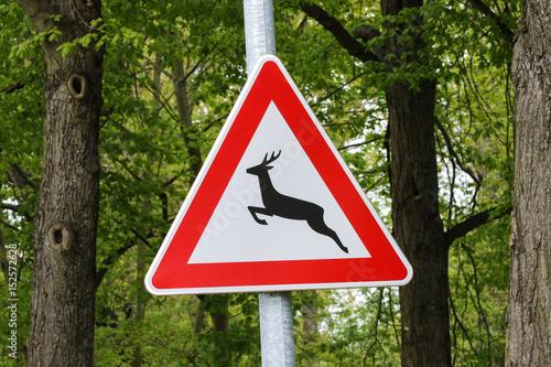 Wildwechsel Verkehrszeichen Poster