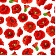 Flower of poppy floral seamless pattern background - 152581457