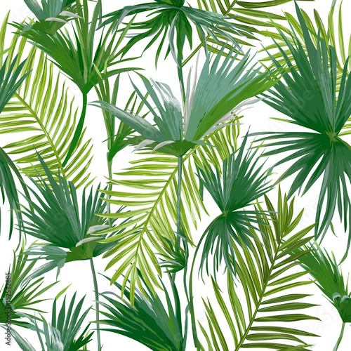 Tropical Palm Leaves, Jungle Leaves Seamless Vector Floral Pattern Background © wooster