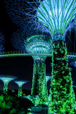 Supertreegarden by night in Singapore - 152589257