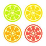Colorful citrus slice icon set