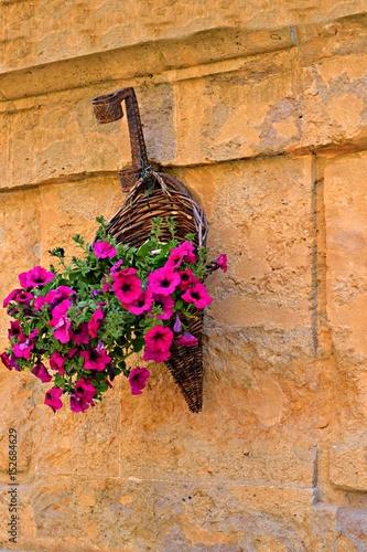 Addobbo floreale nel borgo di Pienza in Toscana