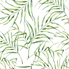 Watercolor pattern with palm tree leaves. Hand painted exotic greenery branch. Botanical illustration. For design, print or background