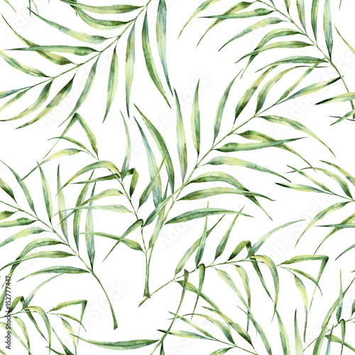 Watercolor pattern with palm tree leaves. Hand painted exotic greenery branch. Botanical illustration. For design, print or background - 152777447