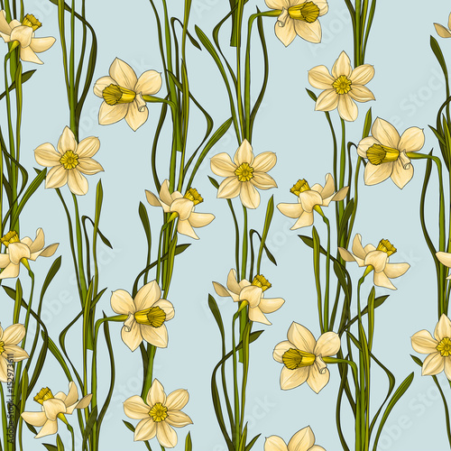 Fototapeta Elegance Seamless pattern with flowers daffodils, vector floral illustration in vintage style