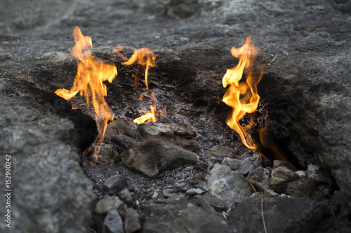 Plakát Chimera -Fire Flames