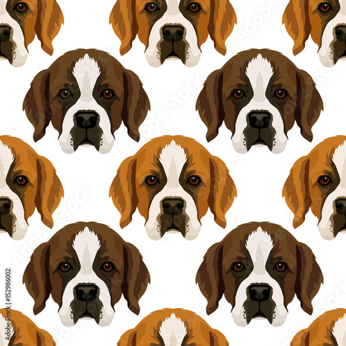 obraz lub plakat Vector seamless pattern with repeat st. Bernard dog face, design for fabric6 or wrapping paper texture