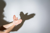 The shadow of the dove from the hands on the wall - 152994277