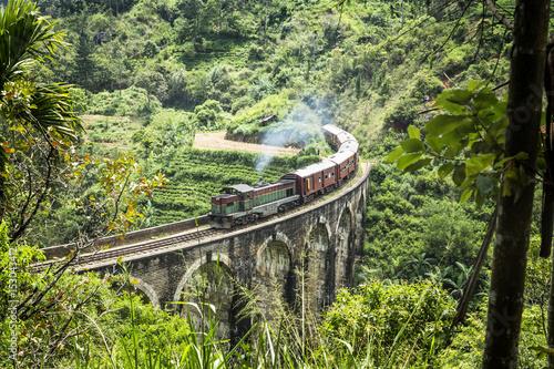 Pociąg na dziewięciu mostów łukowych, Ella, Sri Lanka
