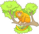 cute monkey on a branch