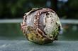 An old weathered baseball outside.