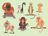 Different breads monkey character animal wild zoo ape chimpanzee vector illustration. - 153284631