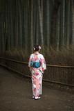 Tourist in kimono, Bamboo Forest, Kyoto