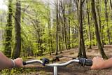 Radfahrer im Frühlingswald mit Sonnenstrahlen
