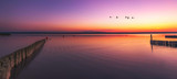 Neusiedlersee Illmitz bei Sonnenuntergang