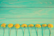 Dandelions on a blue wooden background - 153423068