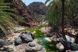 Socotra island, river in Wadi Dirhur. Yemen