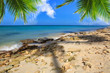 Caribbean island and Palm leaves . - 153538004