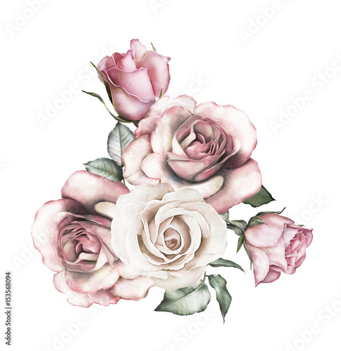 watercolor flowers. floral illustration - pink rose. branch of flowers isolated on white background. Leaf and buds. Cute composition for wedding or  greeting card - 153568094