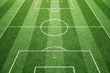 Soccer play field ground lines on sunny grass pattern background. Goal side perspective used.