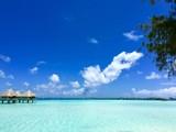 Beautiful view on the turquiose lagoon of Bora Bora and overwater bungalows of a luxury resort, Bora Bora, Tahiti, French Polynesia - 153777206