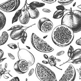 Decorative seamless pattern with ink hand-drawn kumquats, grapefruit and citrus slices. Vector illustration. - 153863605