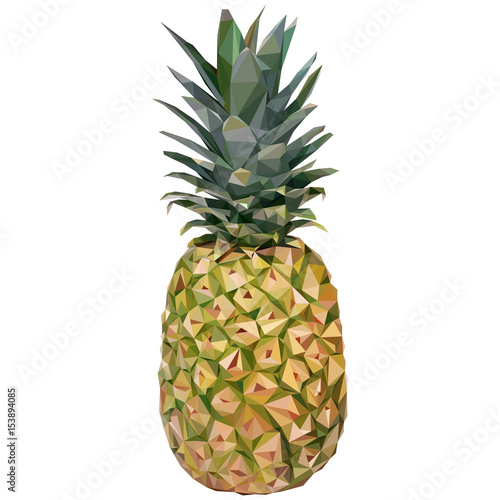 Triangulated pineapple. Vector illustration  - 153894085